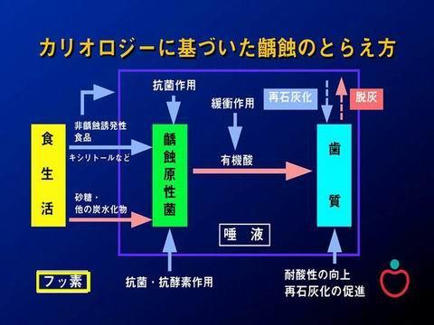 上の図は、カリオロジーに基づいた虫歯のとらえかたです。この理論から虫歯の予防を考えるのです。