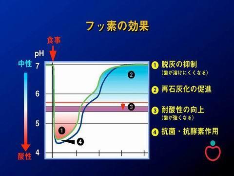 フッ素は、その過程の4箇所で働いてくれます。①~④